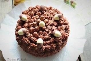 Gâteau mousse au chocolat (3)