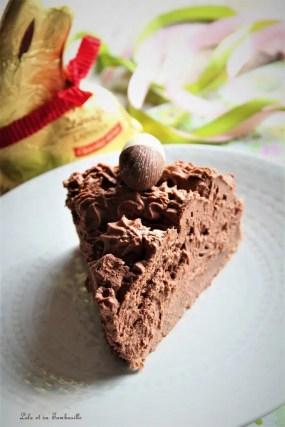 Gâteau mousse au chocolat (7)