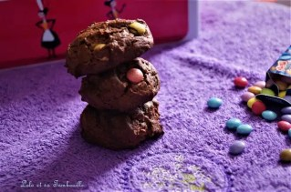 Outrageous Chocolate Cookies {aux samrties}2 (6)