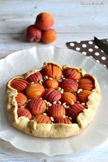Tarte rustique aux abricots (2)