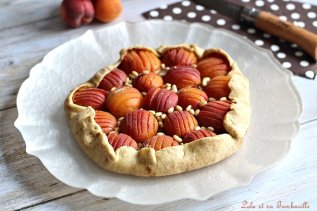 Tarte rustique aux abricots (4)