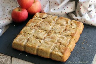 Moelleux pommes aux amandes & noisettes (2)