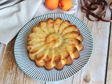 Gâteau aux abricots (3)