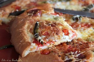 Pâte à pizza liquide (7)