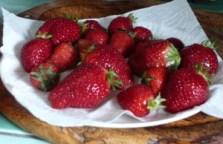 Salade de fraises au citron 1
