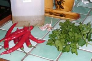 Sauce pimentée au gingembre (1)