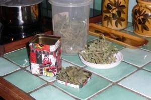 Gelée de verveine menthe (1)