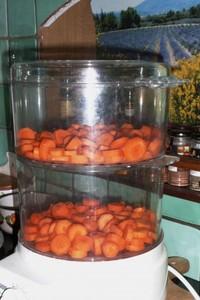 Portions congelées de purée de carottes (1)
