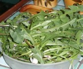 Salade sauvage détox (1)