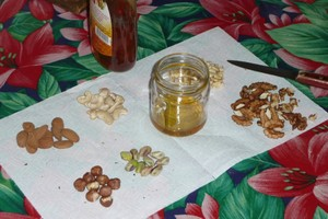 Miel aux noix, noisettes et compagnie (1)