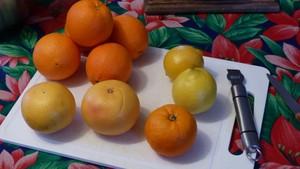 Confiture aux agrumes et aux épices (1)