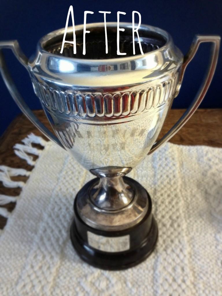 trophy 4 after