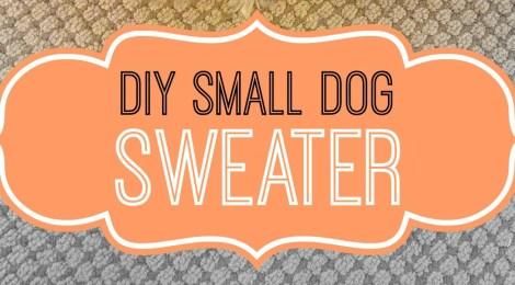 DIY Small Dog Sweater