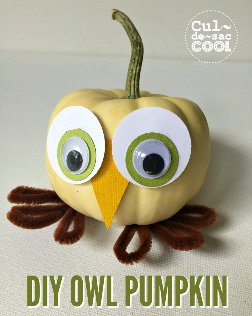 owl-pumpkin-14-cover-2