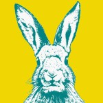 DIY Printable Hip Hop Easter Bunny
