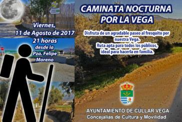 Caminata Nocturna por la Vega