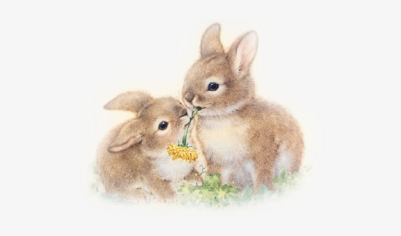 Rabbits and Reanimation: The Strange Coalescing of the Sensual and the Divine on Easter