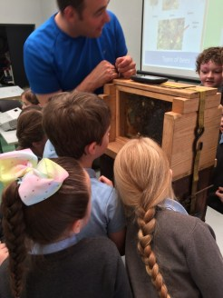 We learned how the Biodiversity Area in our school helps the bees.