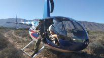 Chopper culling