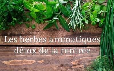 Les herbes détox pour la rentrée : Basilic, persil et ciboulette