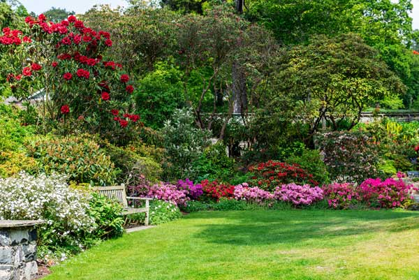 Jardin fleuri à l'anglaise
