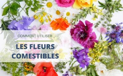 Utiliser des fleurs comestibles dans ses plats