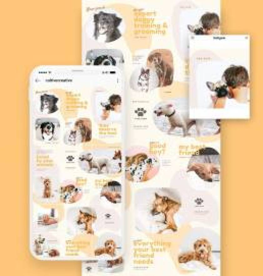 Pets Instagram Collage Template