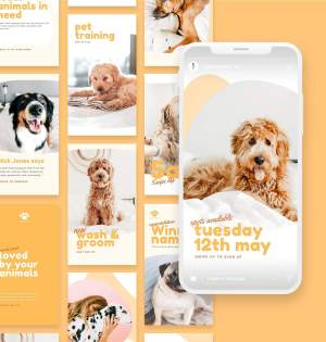 Pets Social Story Template