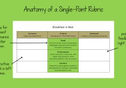Anatomy-Single-Point
