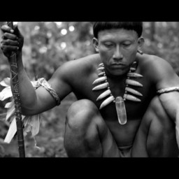 The Amazon and the Embrace of the serpent