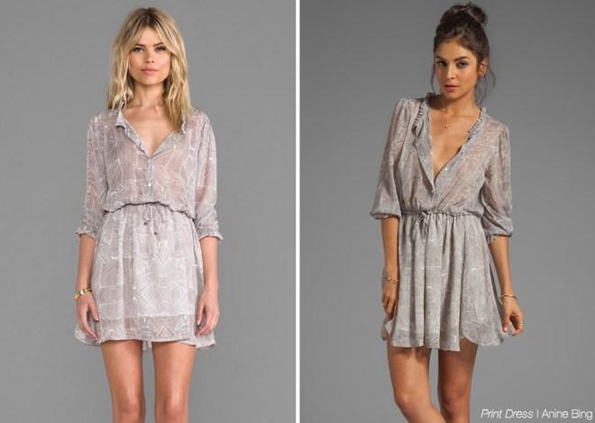 Anine-Bing-Print-Dress
