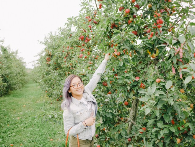 apple-picking-2