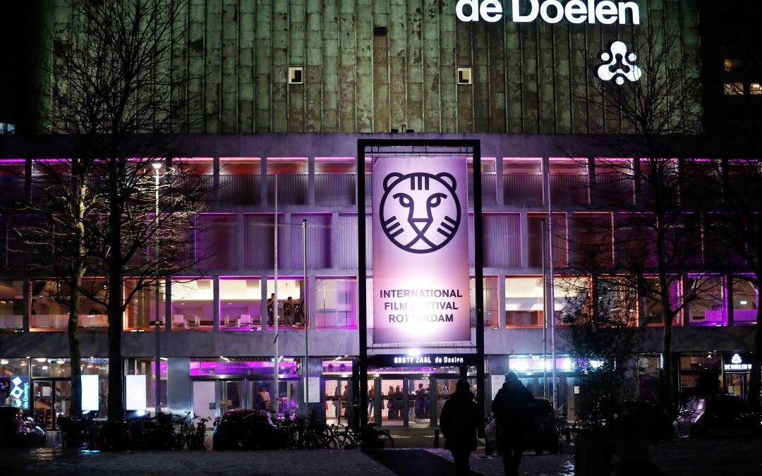 Festival Internacional de Cine de Rotterdam 2019: una jornada particular