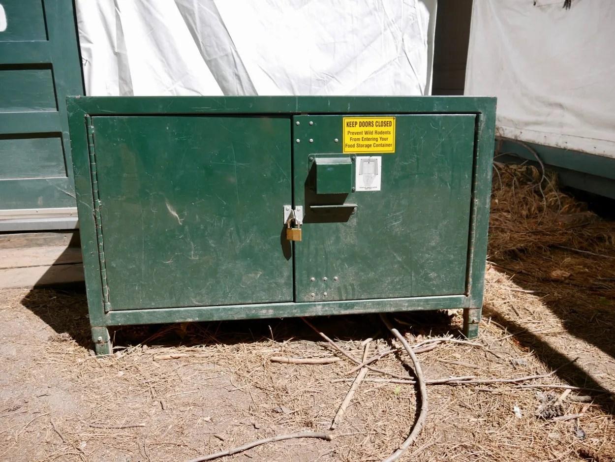 Green bear proof locker