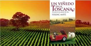 viñedo toscana