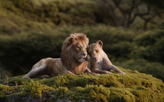 il re leone il cerchio della vita