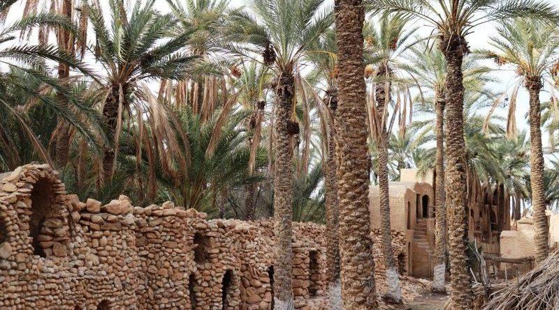 Le Sud, l'autre facette du tourisme en Tunisie (Reportage)