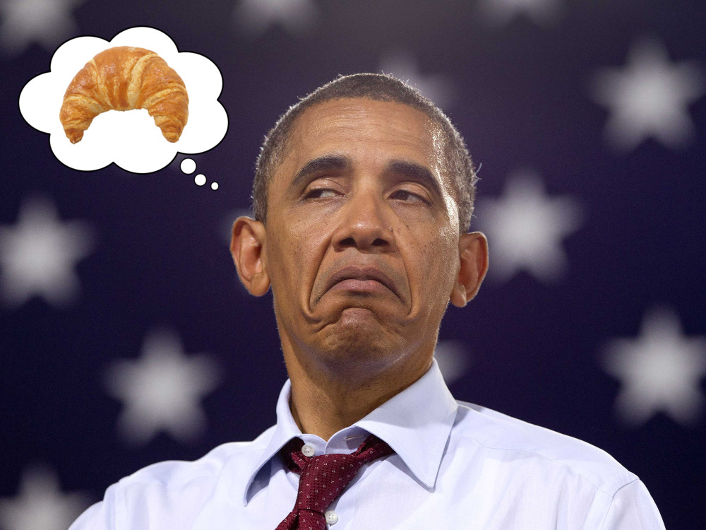 ObamaSulk