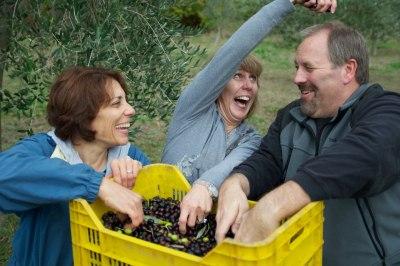 We Came, We Harvested, We Made Olive Oil!