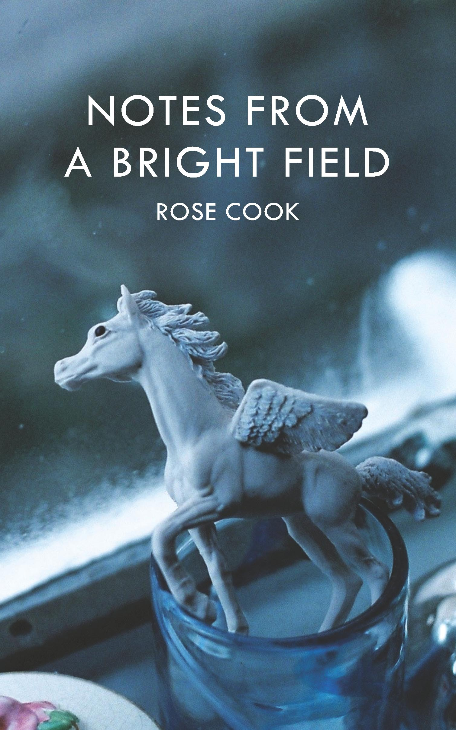 Notes from a Bright Field by Rose Cook