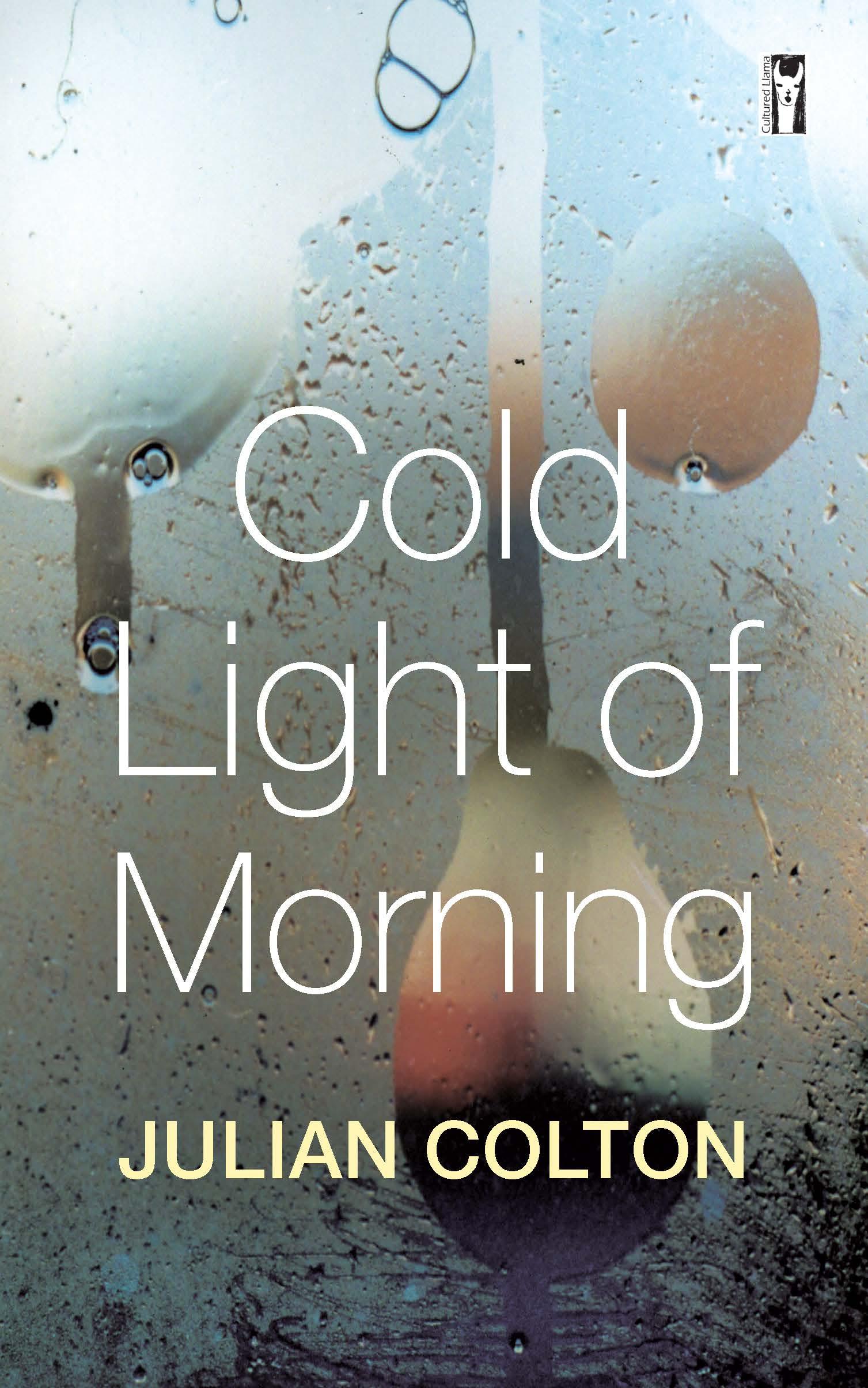 Cold Light of Morning by John Brewster