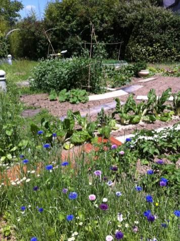 Des fleurs et de beaux légumes