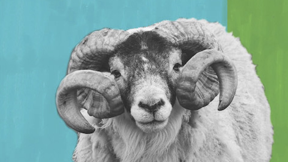 Ram On