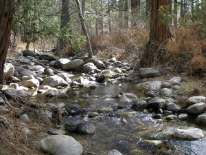 idyllwild creek