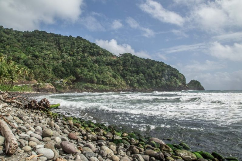 Culture in Dominica:Dominican Rosalee Bay-7327