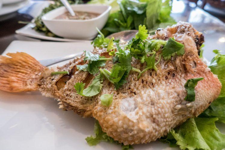 little cambodia philadelphia i heart cambodia fried tilapia