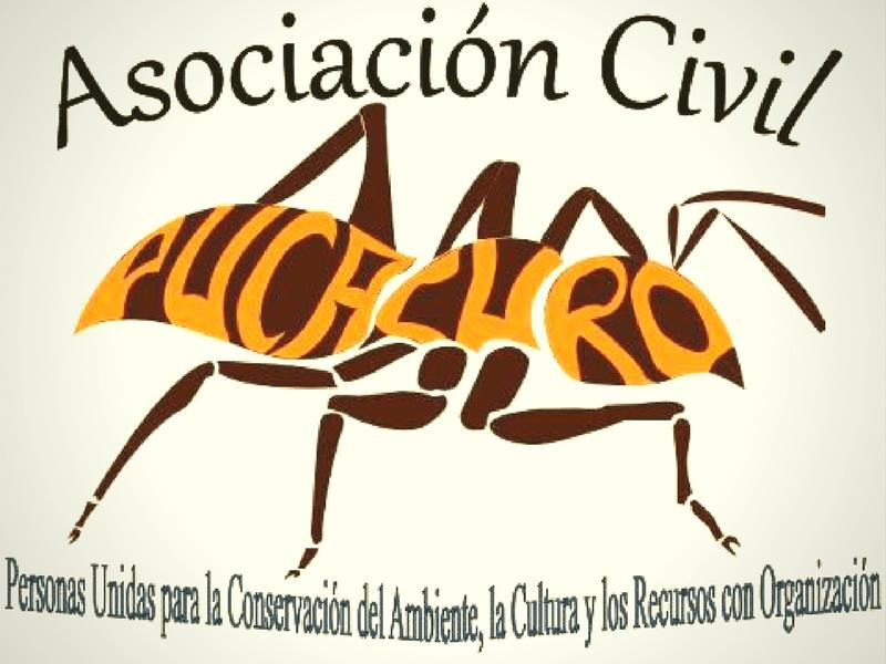 Pucacuro Eco-Friendly Volunteering Peru