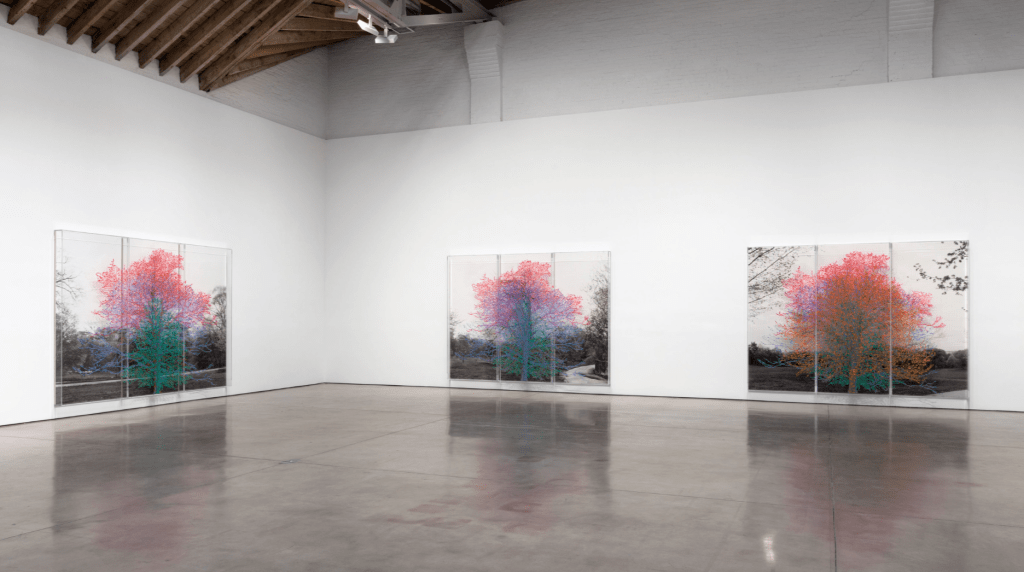 Installation View - Charles Gaines - Paula Cooper Gallery - Spring 2016