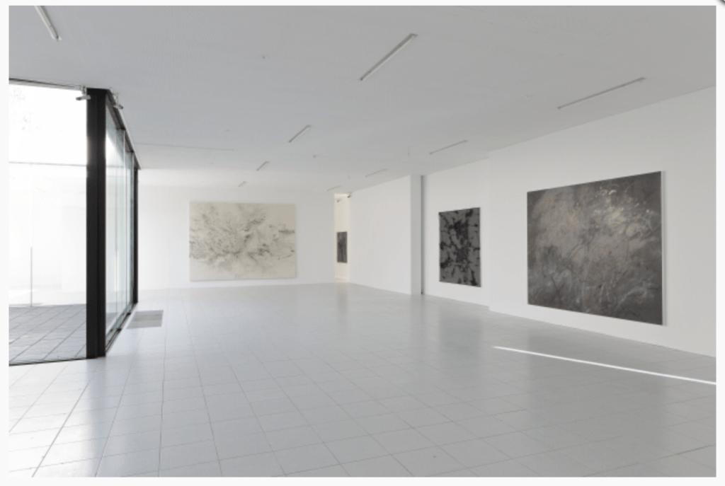 Installation view of Julie Mehretu & Jessica Rankin - Earthfold