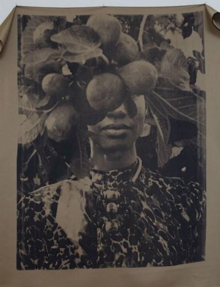 Zohra Opoku -  Ficus Carica